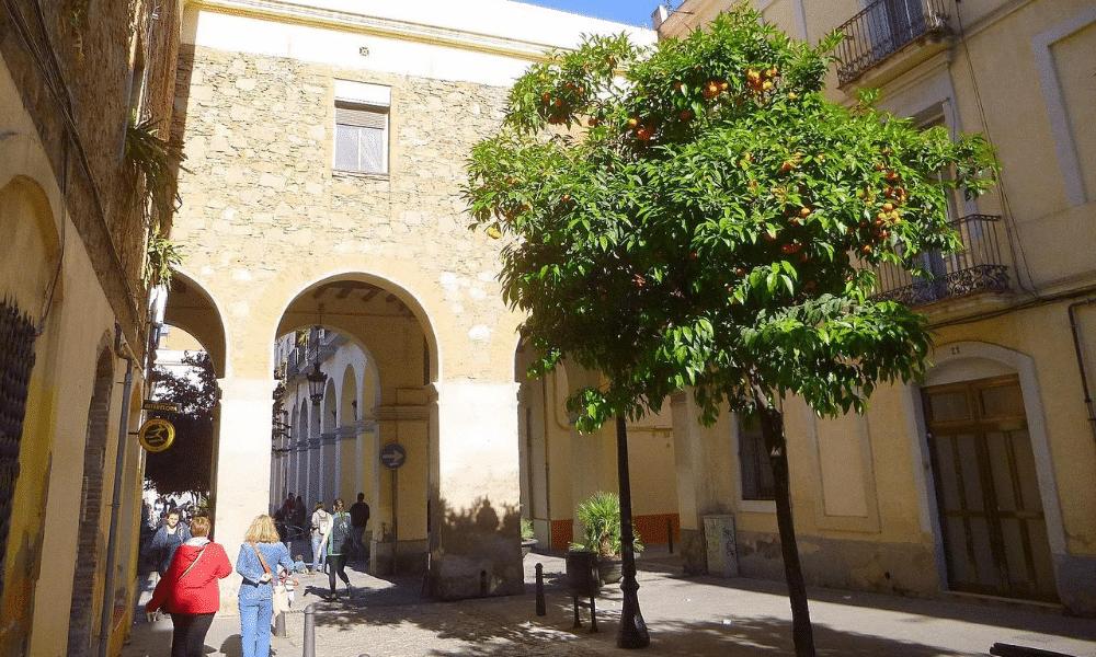 Reformes a Sant Andreu